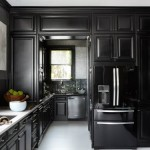 17 Ultimate Black Kitchen color Ideas For 2016 Ultimate Black Kitchen color Ideas For 2016 home inspiration ideas